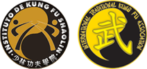 International Traditional Kung Fu Association
